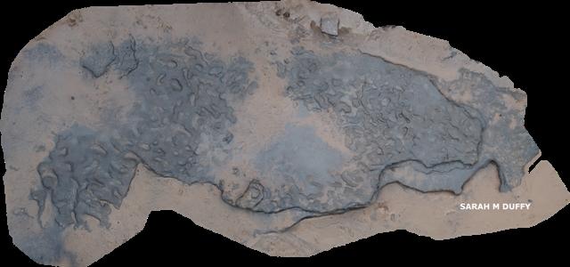 Footprints-model-SMD